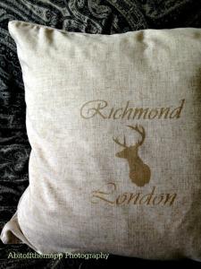 richmond cushion close up sml